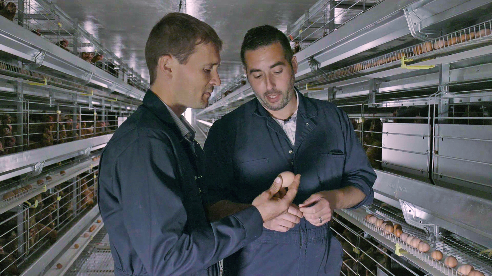 Nathan Pelletier, Egg Farmers of Canada